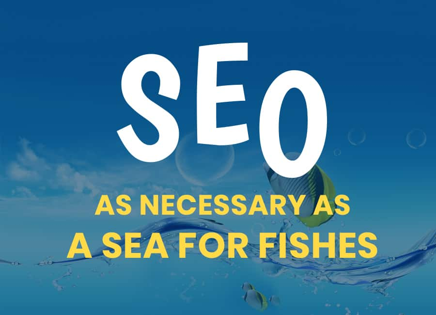 Let step up by showing what actually the SEO is.