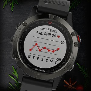 Garmin Fenix 5 sports GPS watch