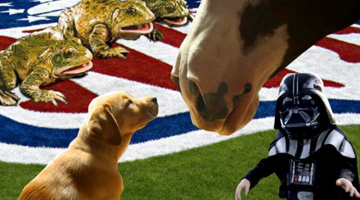 5 Best Super bowl Commercials Of All Time