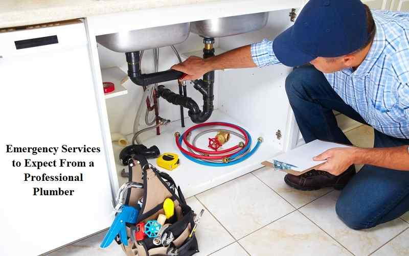 Emergency Services to Expect From a Professional Plumber