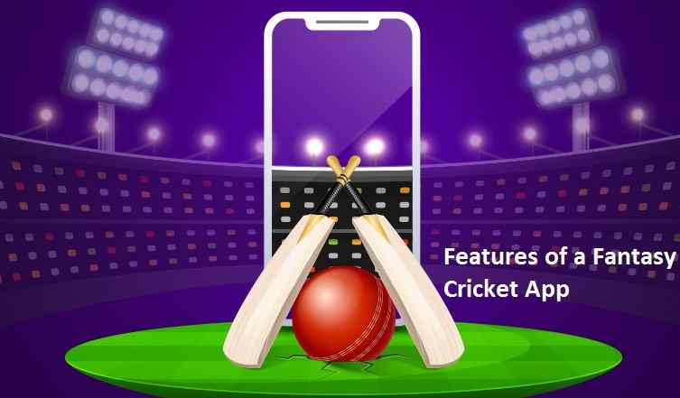 Features of a Fantasy Cricket App